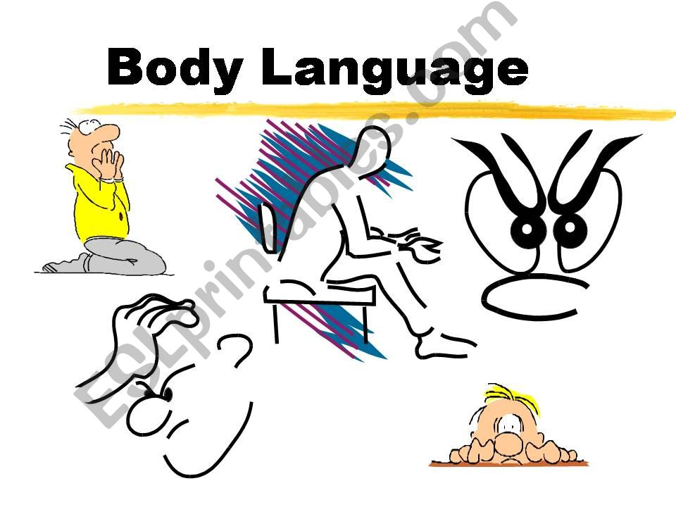 Body language vocabulary powerpoint