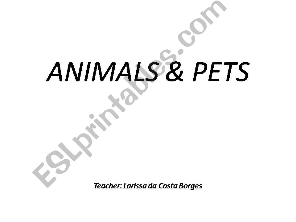 Animals and Pets  powerpoint
