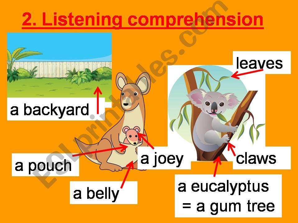 Australian animals listening  powerpoint