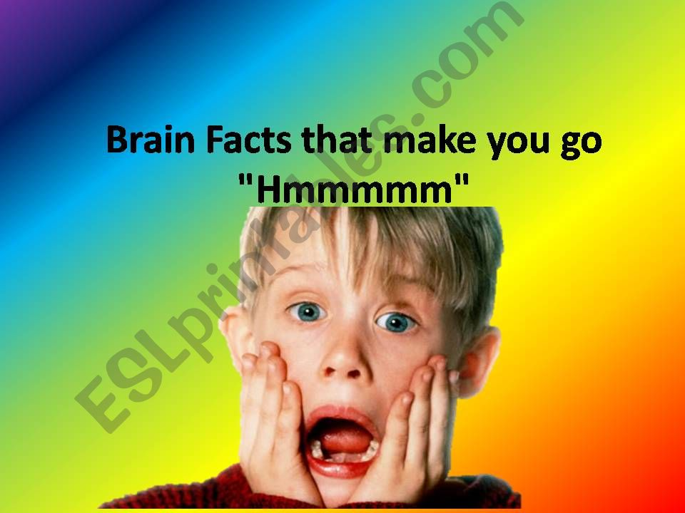 Interesting brain facts powerpoint
