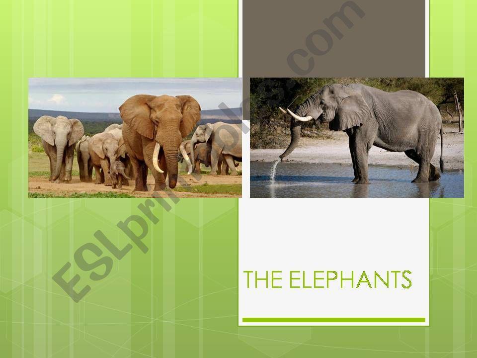 Edangered animals