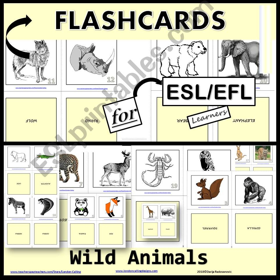 Flashcards - Wild Animals powerpoint