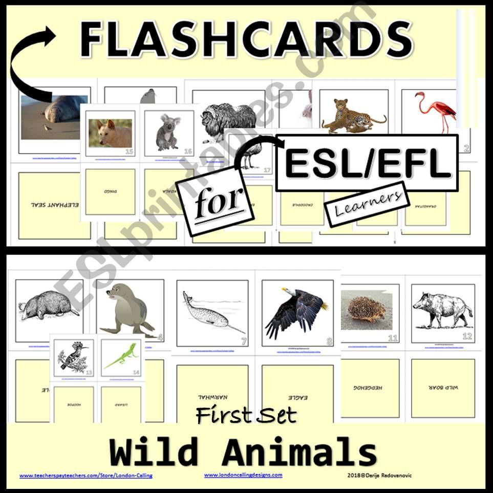 Wild Animals - Flashcards - First Set