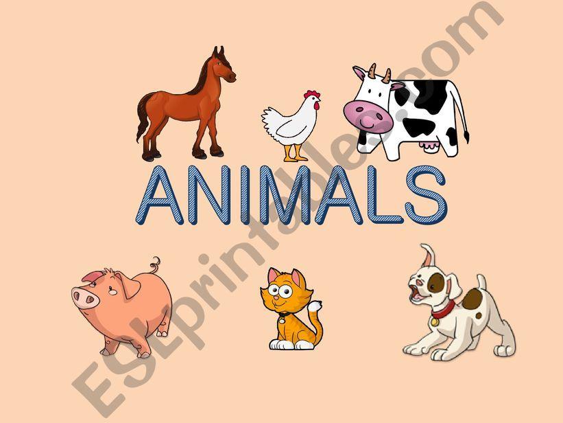 Animals - matching game (memory)