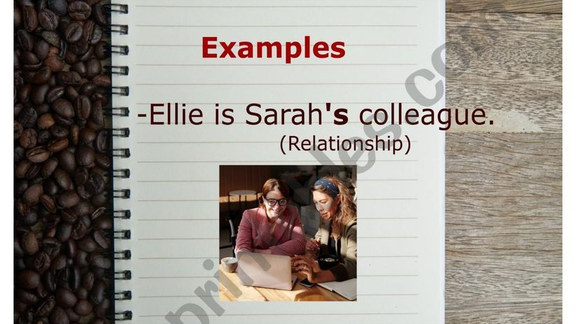 Possessive Nouns examples Flashcards