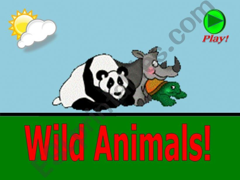 What is this ? - Wild Animals - part 01