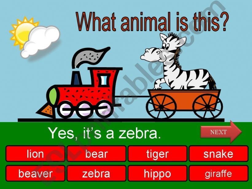 What is this? Wild animals - part 03
