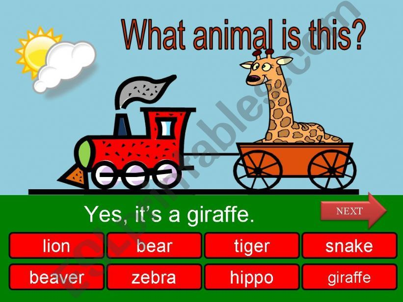 What is this? - wild animals part 07