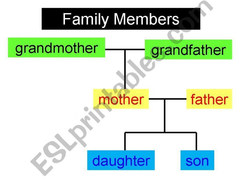 Family Vocabulary powerpoint