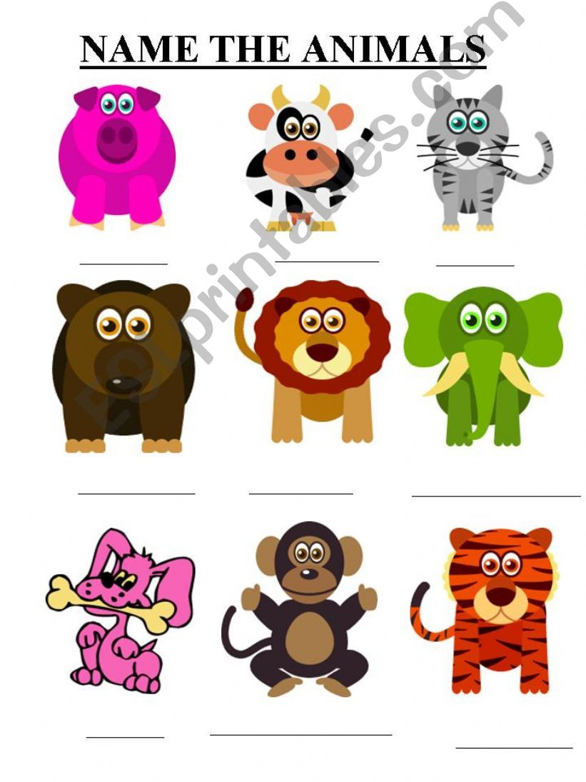 NAME THE ANIMALS powerpoint