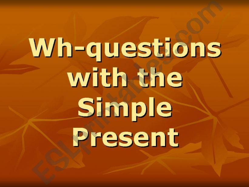 WH questions with Simple Present