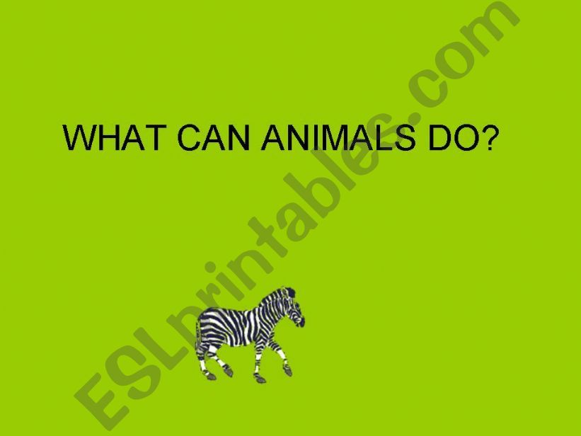WHAT CAN ANIMALS DO? powerpoint
