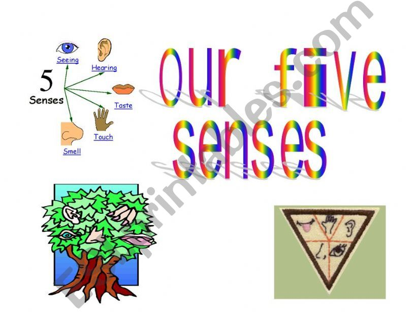 Five senses powerpoint
