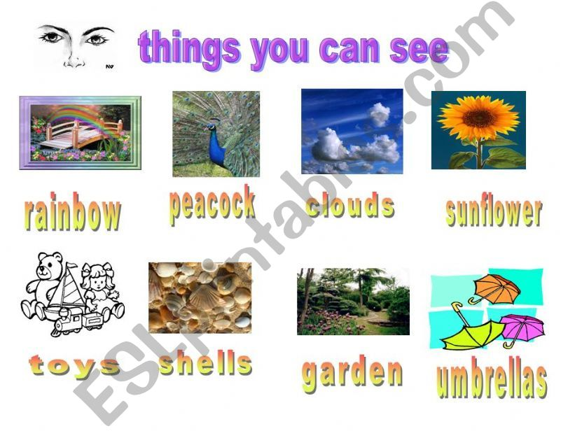 Five senses - sight powerpoint