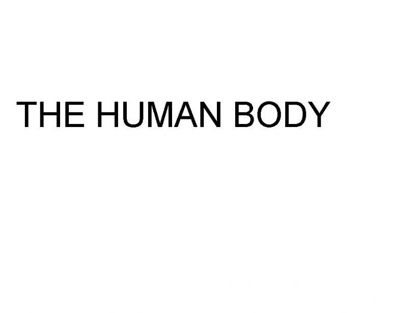 THE HUMAN BODY powerpoint