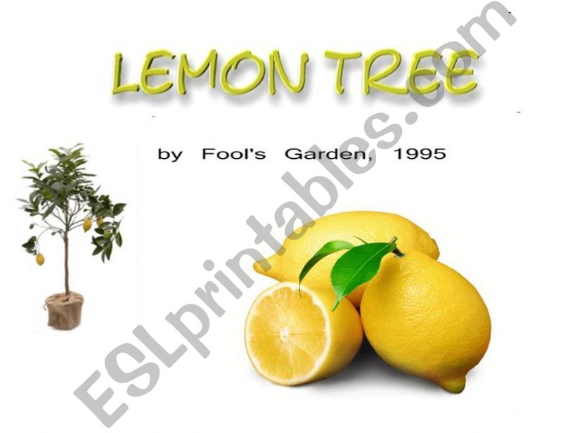 A song- Lemon Tree powerpoint