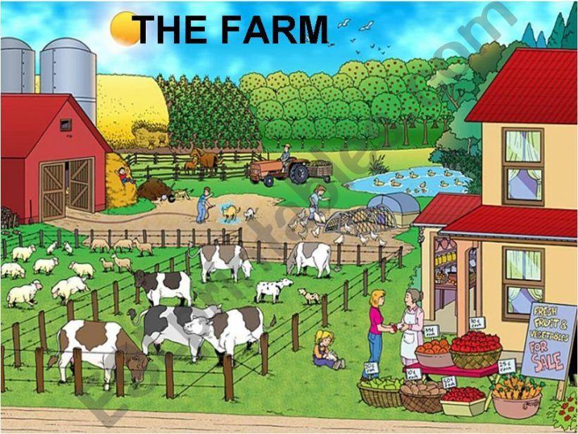 the farm animal powerpoint