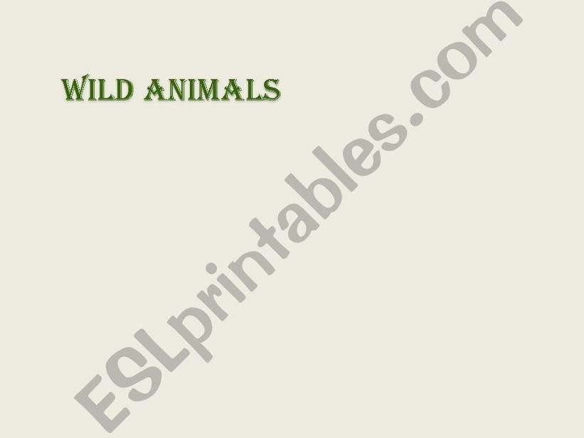 Wild Animals powerpoint