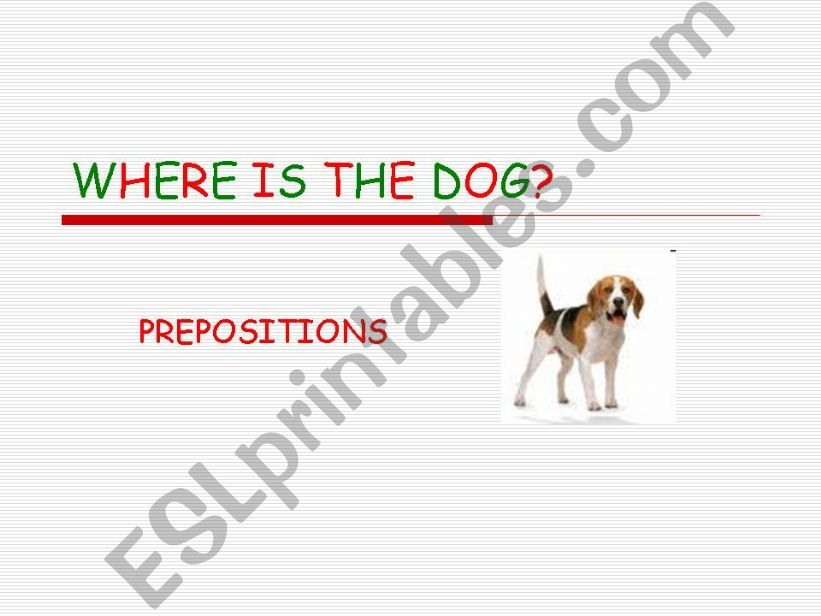 Where is the dog? Prepositions