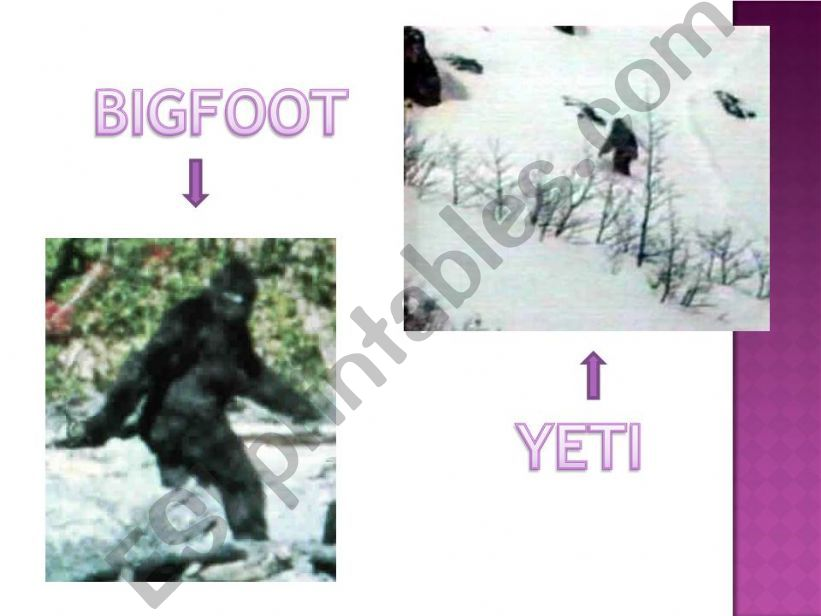 bigfoot and the yeti powerpoint