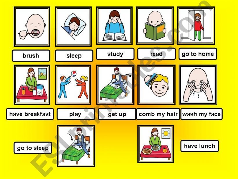 present simple and action verbs