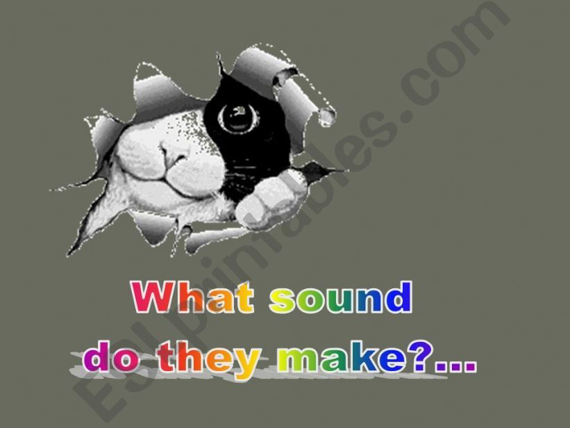 What Sound Do They Make? powerpoint