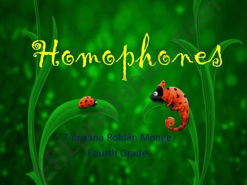 homophone words powerpoint