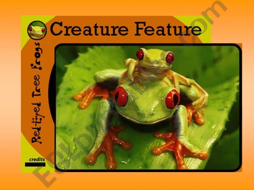 RED FROGS powerpoint