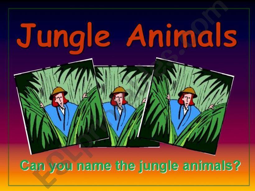 Jungle Animals powerpoint
