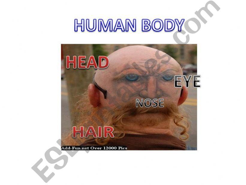 Human Body powerpoint