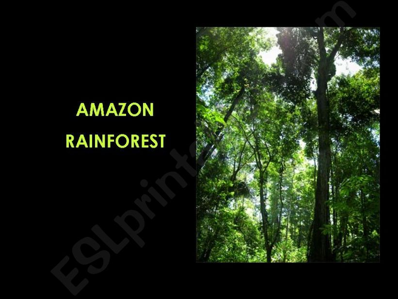 esl english powerpoints amazon rainforest part 1