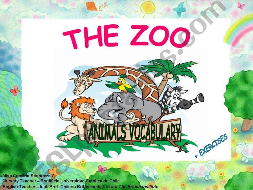 Animal Vocabulary powerpoint