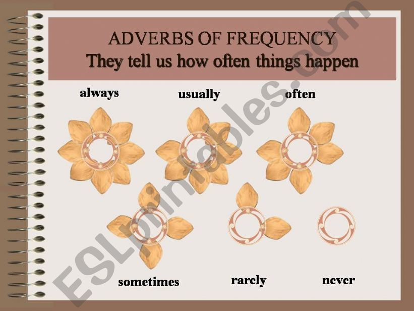Frequency Adverbs powerpoint