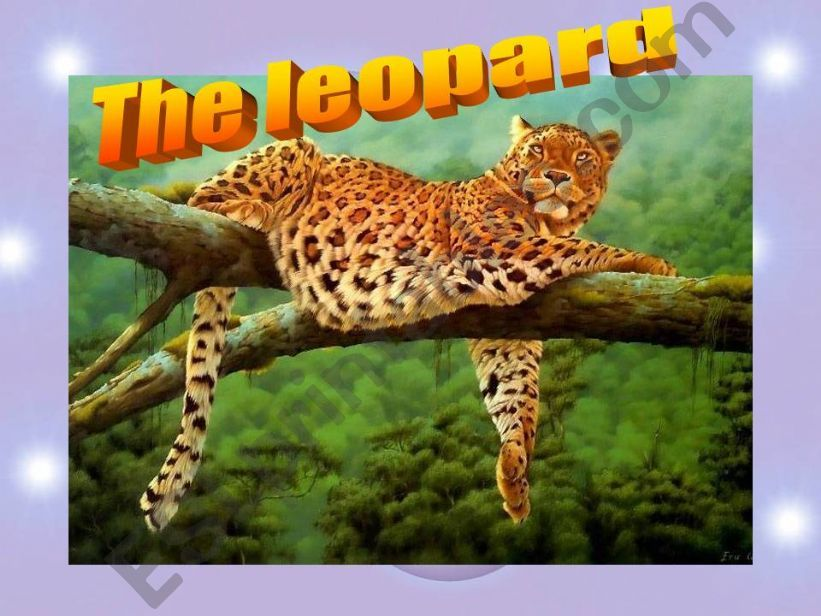 the leopard powerpoint
