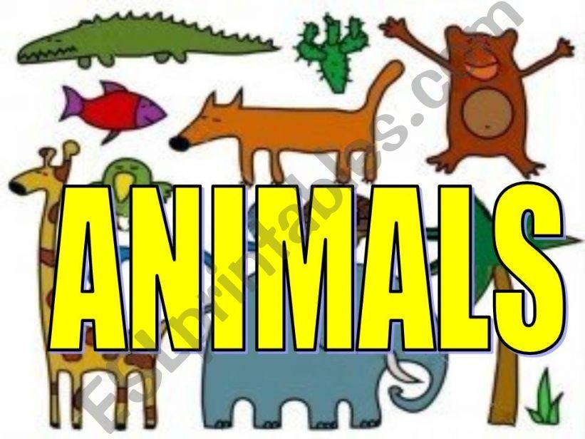 Animals powerpoint