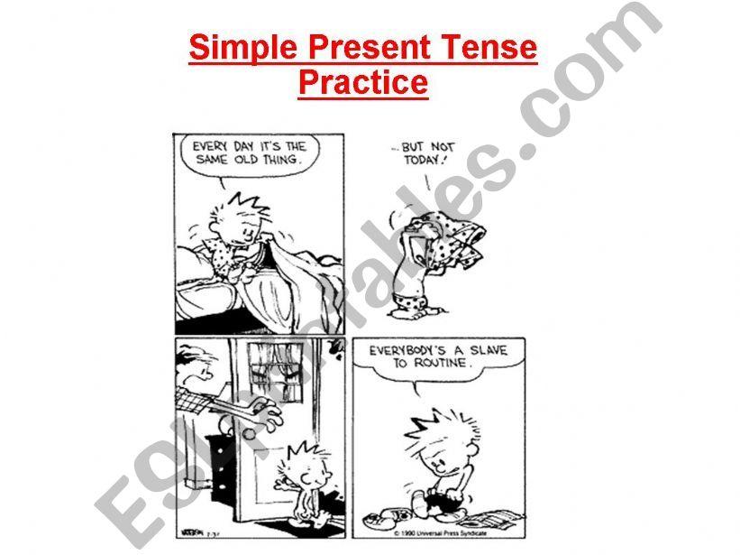 Simple Present Tense - Practice