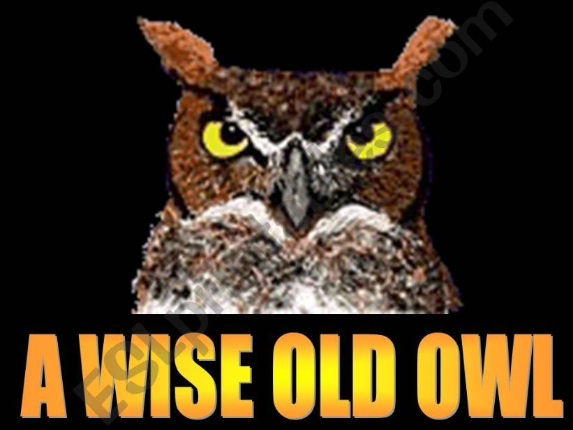 A wise old owl powerpoint