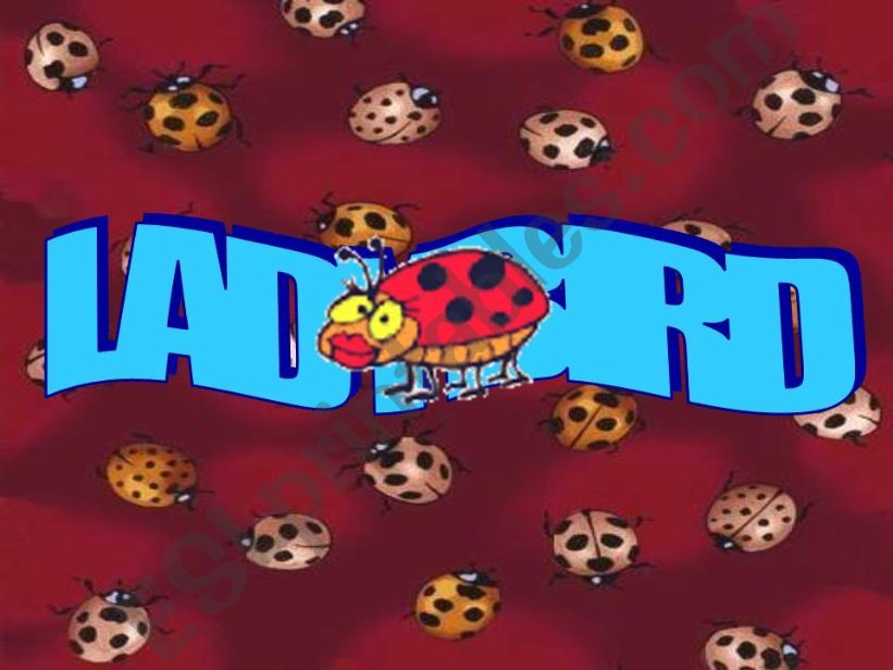 Ladybird Nursery Rhyme powerpoint