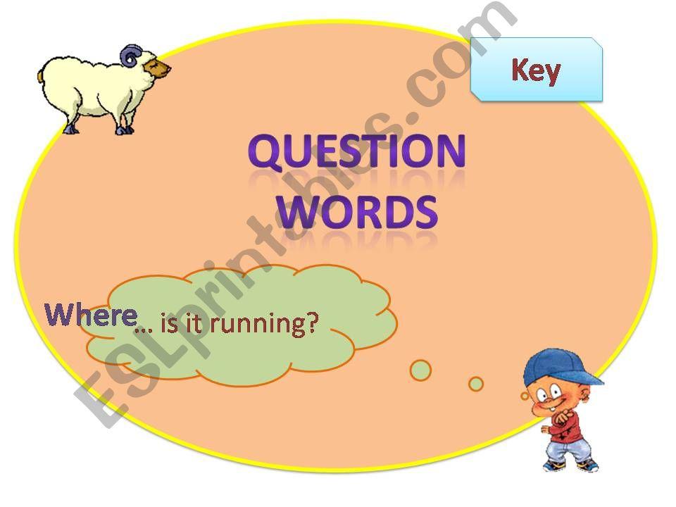 Question Words Present Simple/Present Continuous Part 2