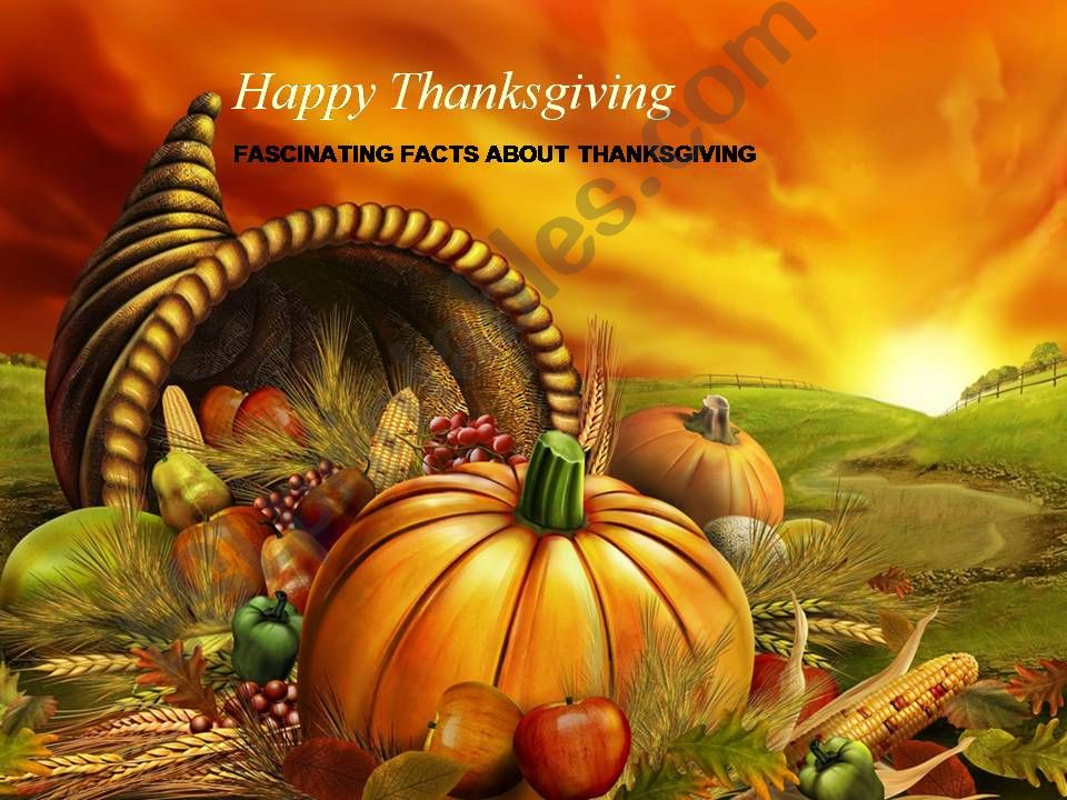 Fascinating Facts about thanksgiving