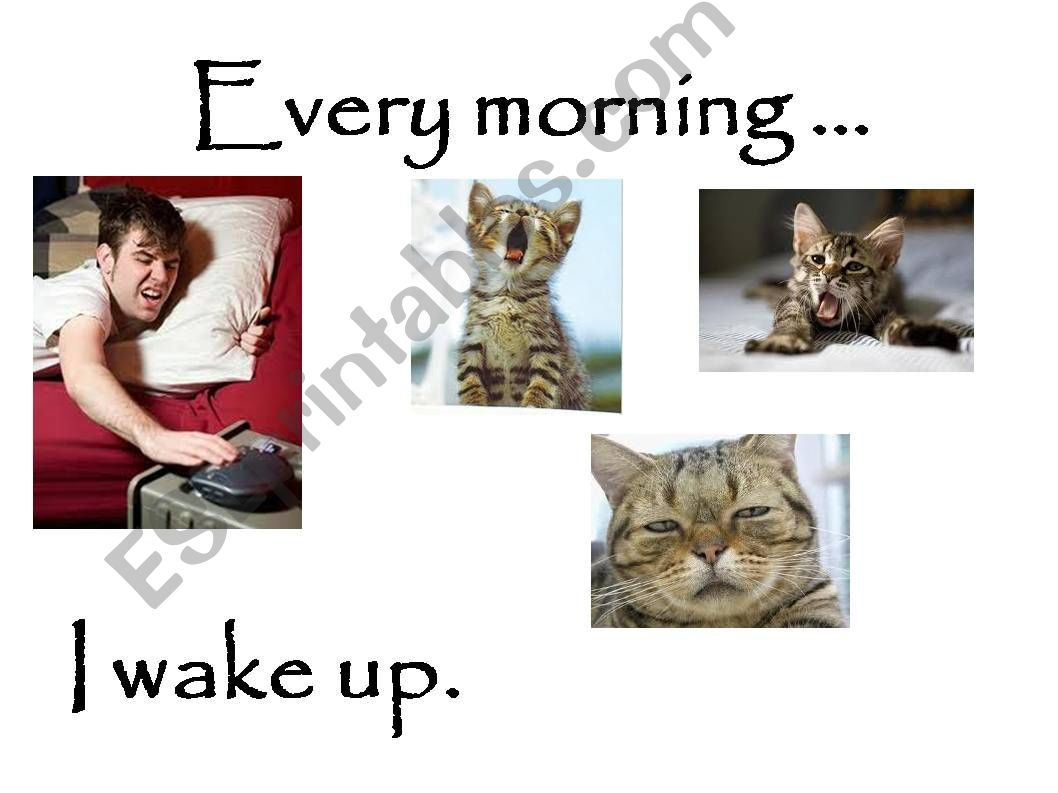Daily Routines (cute and funny pictures)