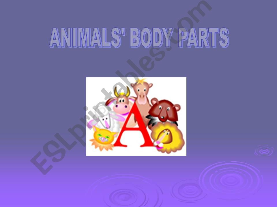 ANIMALS, BODY PARTS powerpoint