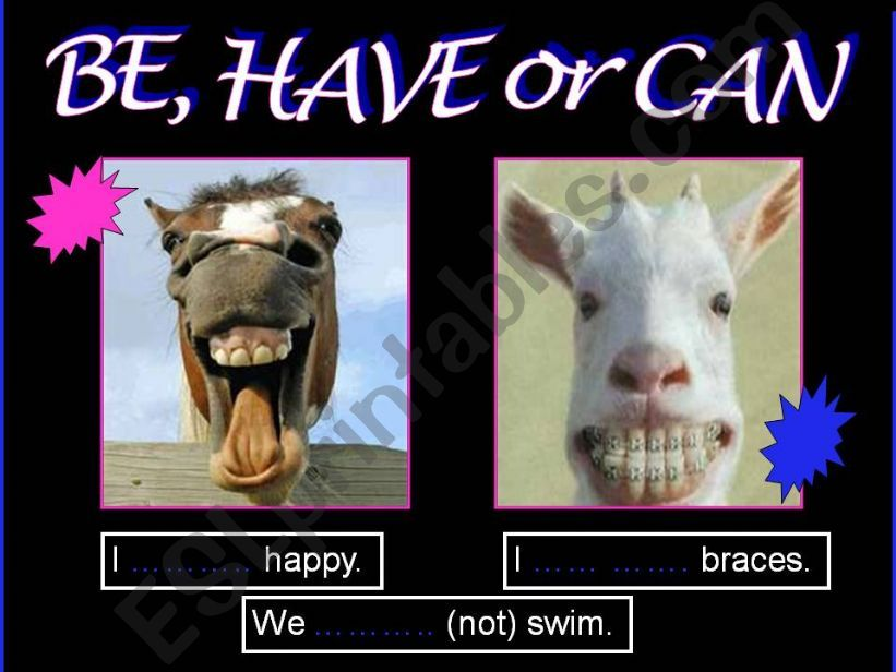BE, HAVE, CAN & FUNNY ANIMALS powerpoint