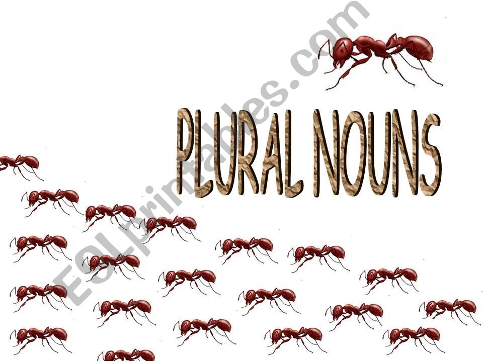 Plural of Nouns (Animals and Flowers)