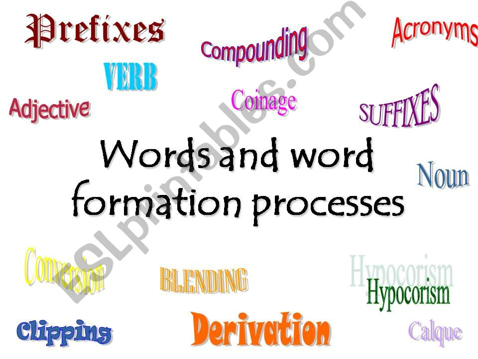 Words and word formation processes