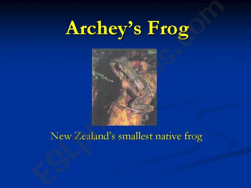 Archey´s Frog powerpoint