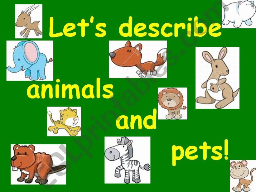 Describing animals and pets powerpoint