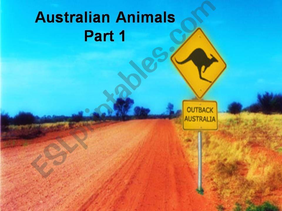 Australia: Australian Animals (Part 1)