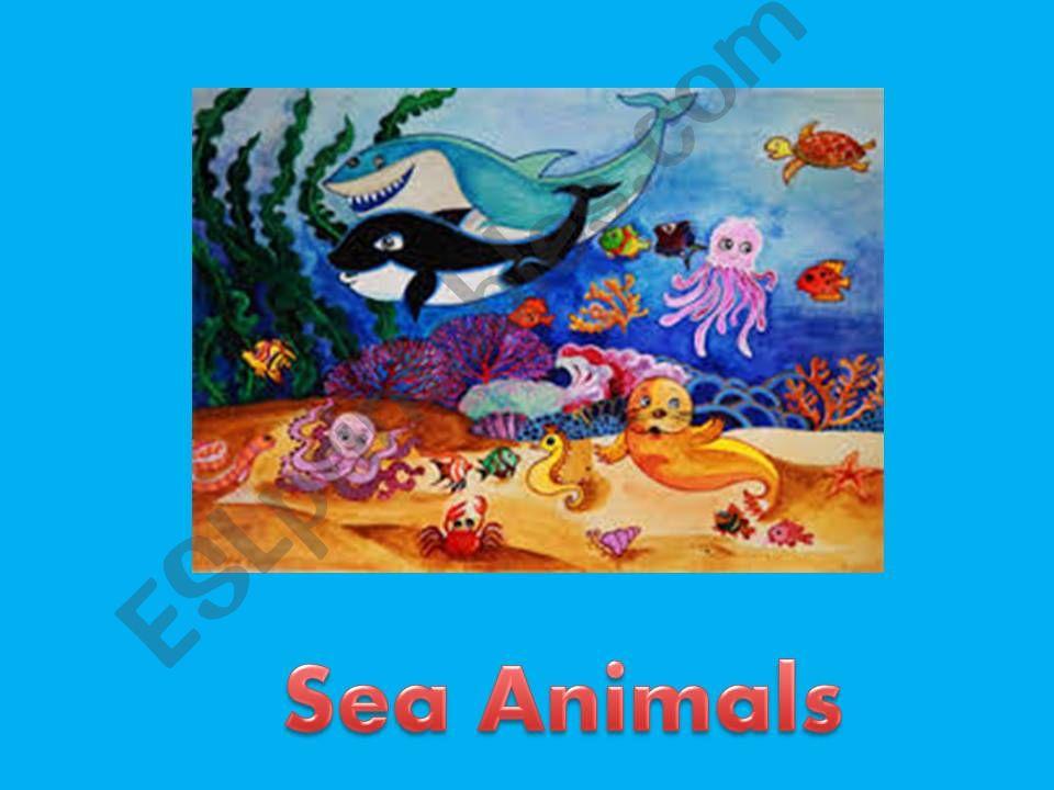Sea animals powerpoint