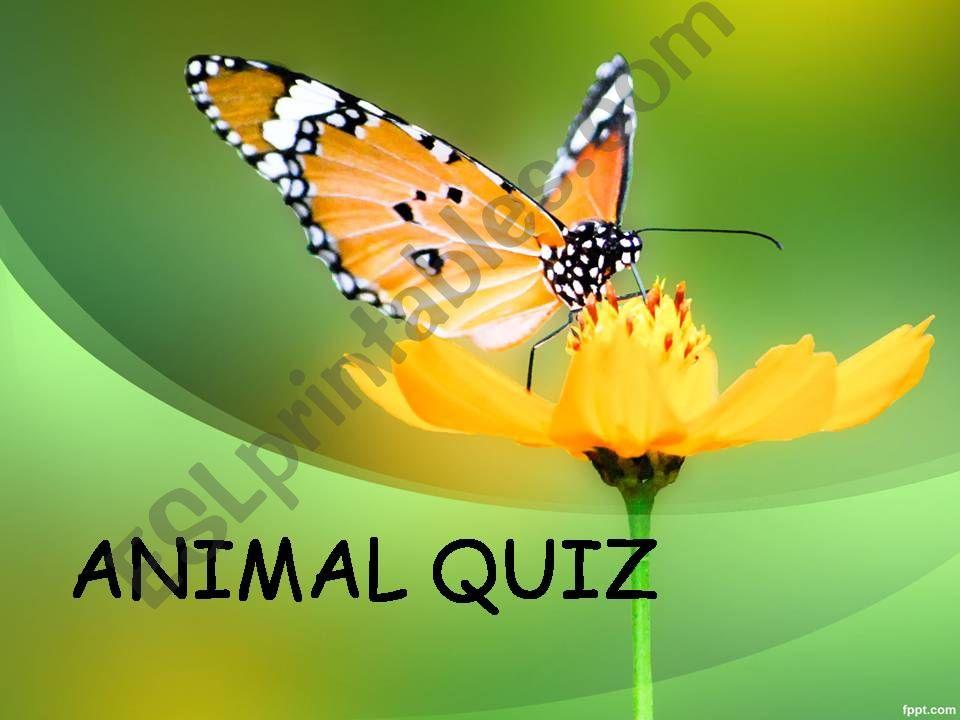 ANIMAL QUIZ powerpoint